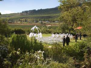 Wedding in Elgin valley