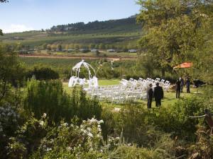 Wedding in Elgin valley